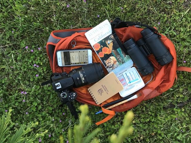 Naturalist Backpack - Shannon Pierce