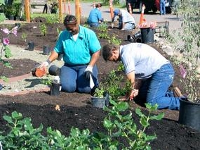 Sonoma County inmates installing their new demonstration garden.