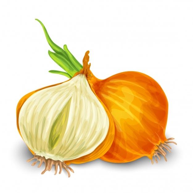 onion1,