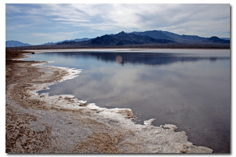 Bristol Lake after a heavy rain in 2010. Copyright DesertUSA.com
