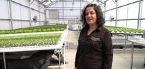 GreenHouse Clara Wilshire for Cómo vivir más saludable Blog