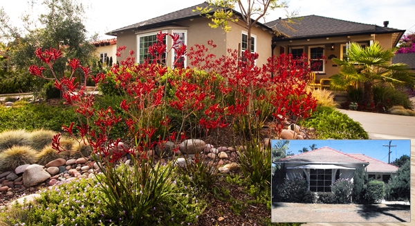 Before And After Image Of A Low Water Use Landscape Photos By Environs Architecture