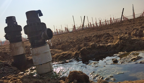 Irrigation for a new vineyard in the Cuyama groundwater basin. Photo by Casey Walsh.