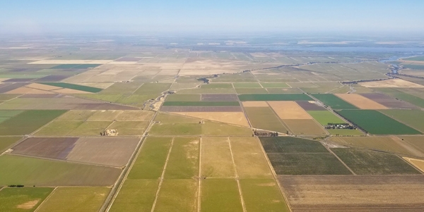 Economic policy approaches to water allocation in California