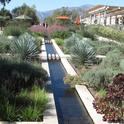 Huntington Gardens in San Marino, California, provides an example of an attractive, low water use landscape. Photo by John Karlik.