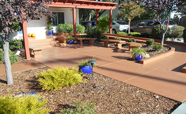 Mulches can help to save water. Photo by John Karlik.