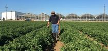 IMG 3521 for Crop Biostimulants Blog