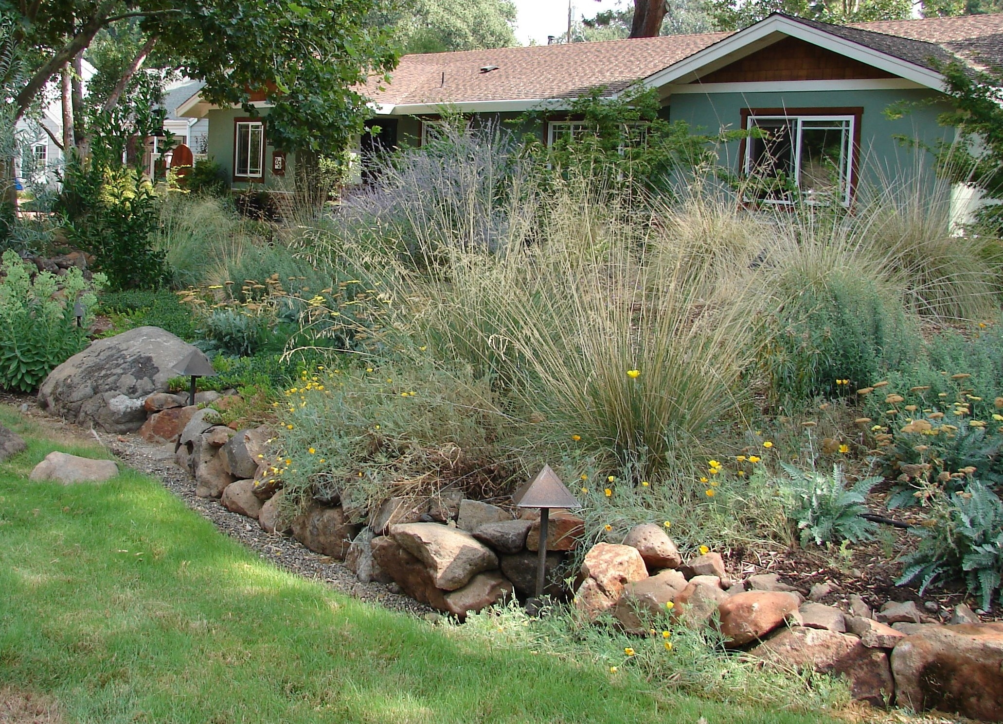 Front Yard With Native Plant By Eve Werner