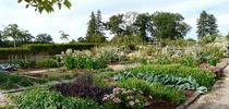 Potager Garden in Dordogne, France for The Real Dirt Blog Blog
