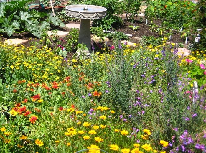 Delightful Flowering Patch By Urban Bee Garden