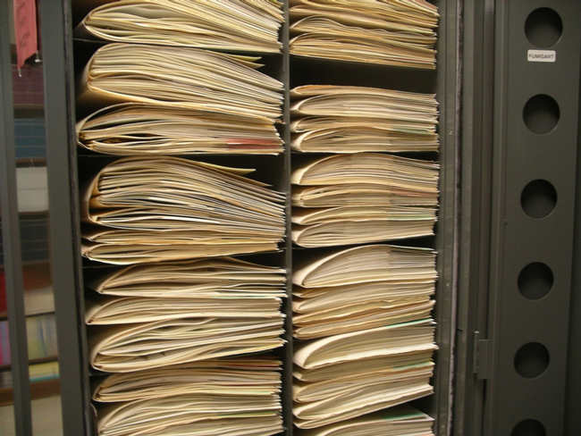Herbarium Folders, Cindy Weiner