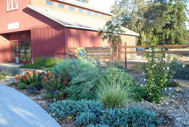 Demonstration Garden at Patrick Ranch