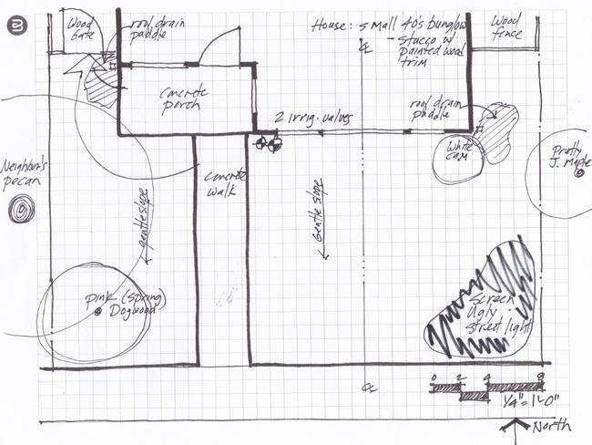 Base map for planting design, Eve Werner