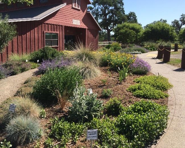 Butte All-Star Garden, L. Kling