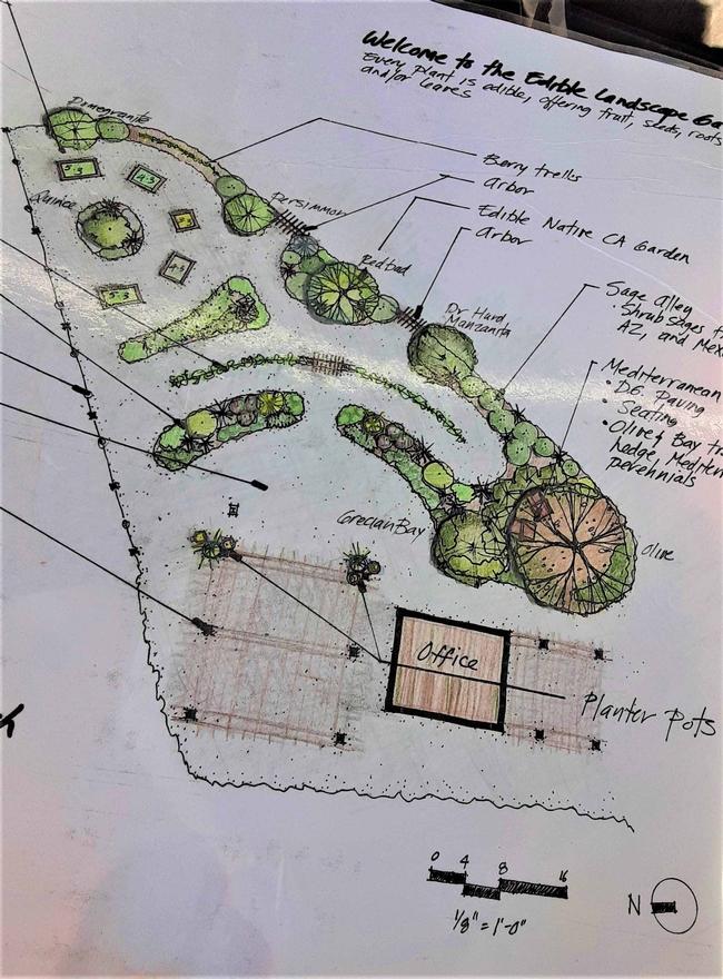 Edible Garden plan by Eve Werner
