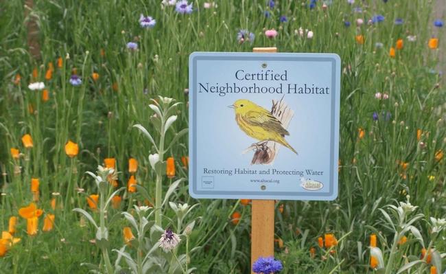 Neighborhood Habitat Certification Sign, Altacal Audubon Society