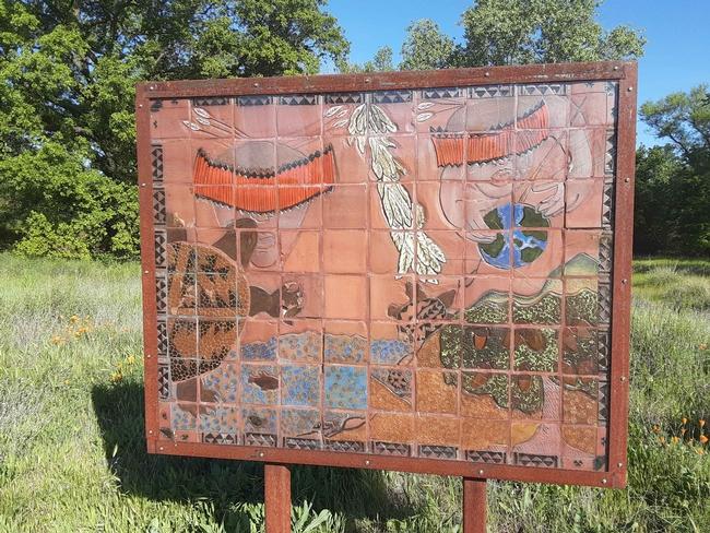 Verbena Fields Mechoopda mosaic, Laura Lukes