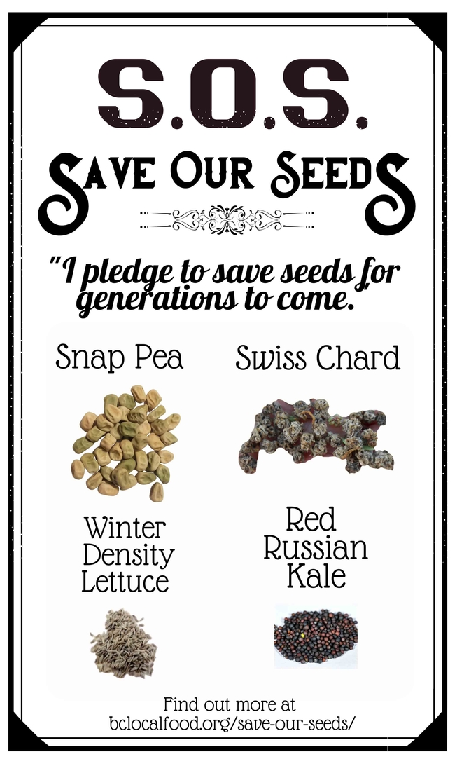 Save Our Seeds 2020 Fall Combo Pack Front
