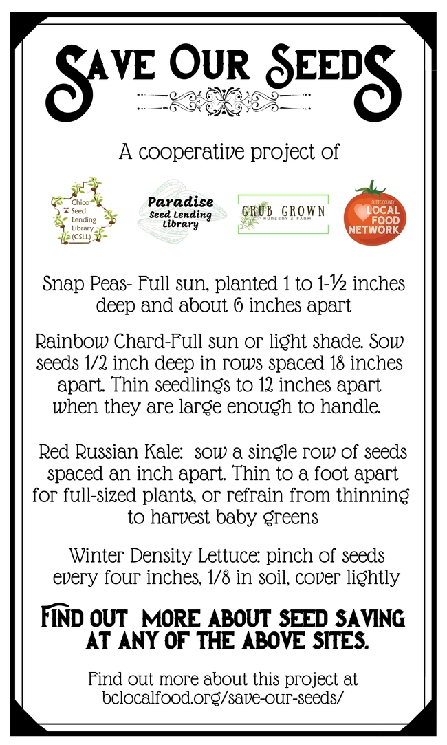 Save Our Seeds 2020 Fall Combo Pack Back
