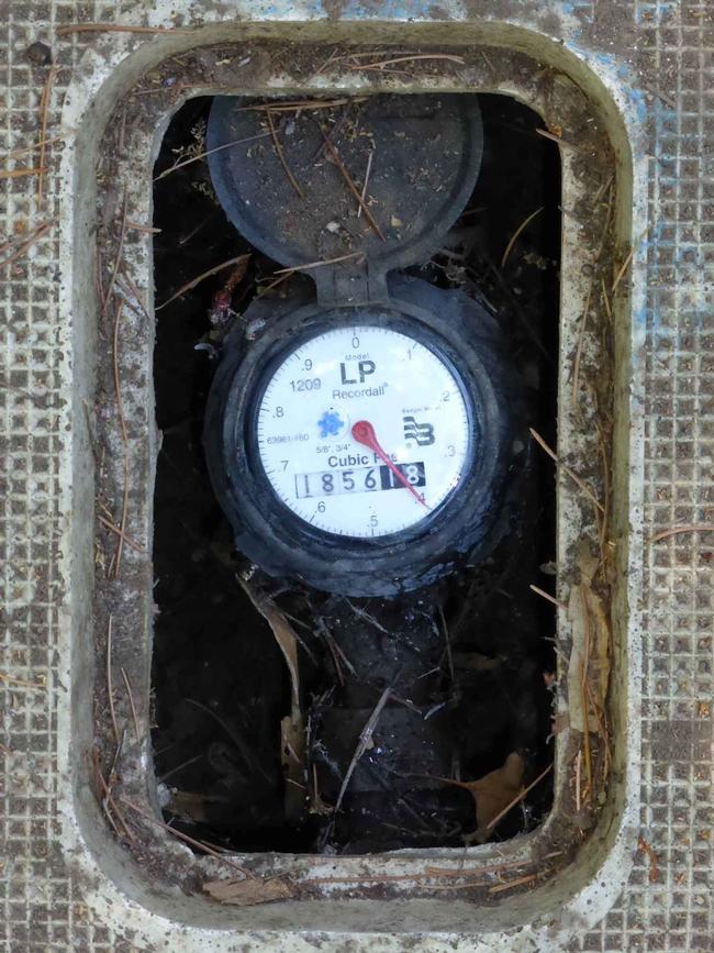 Water meter dial