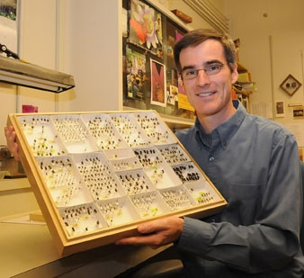 Neal Williams, assistant professor, UC Davis Department of Entomology, holds a native pollinator collection. (Photo by Kathy Keatley Garvey)