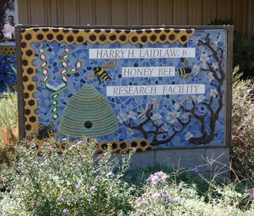 Harry H. Laidlaw Jr. Honey Bee Research Facility. (Photo by Kathy Keatley Garvey)