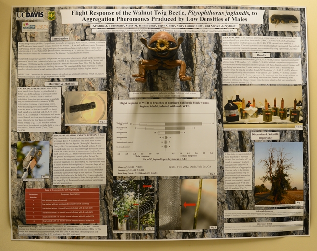 Kristina Tatiossian's poster is mounted on a wall on the third floor of Briggs Hall (Photo by Kathy Keatley Garvey)