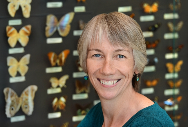 Bryony Bonning is a newly elected Fellow of the Entomological Society of America.