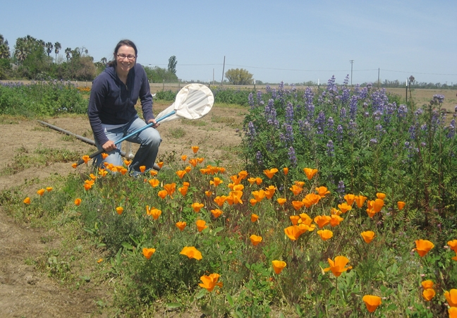 Pollination ecologist Katharina Ullmann will speak on