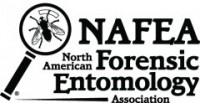 NAFEA logo