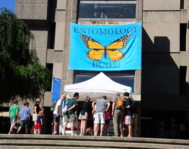 Brigg Hall will be one of the entomology sites for UC Davis Picnic Day. The other: the Bohart Museum of Entomology. (Photos by Kathy Keatley Garvey)