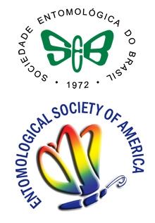 Brazilian and ESA logos