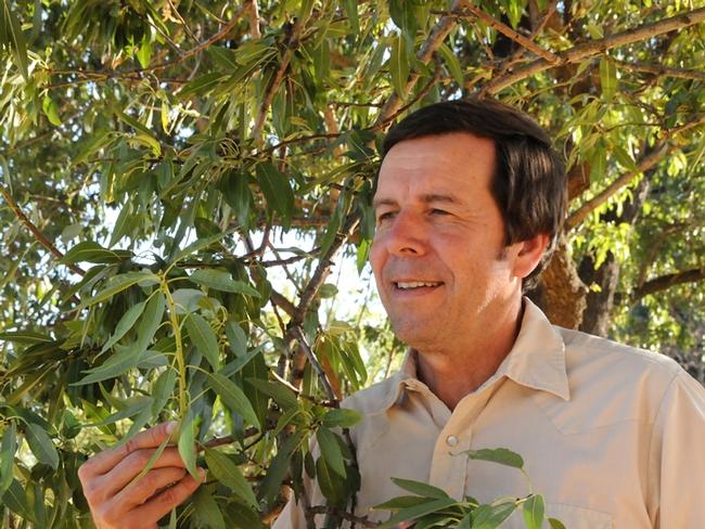 ESA President Frank Zalom of UC Davis checking an almond tree. (Photo by Kathy Keatley Garvey)