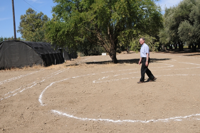 The beginning of the haven. Extension apiculturist Eric Mussen walks the site. This photo was taken Aug. 12, 2009. (Photo by Kathy Keatley Garvey)