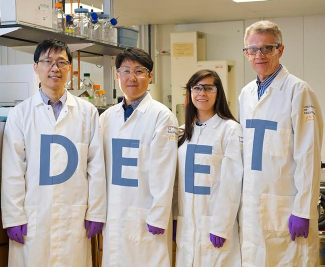 UC Davis scientists in the Walter Leal lab have discovered the odorant receptor in the Culex mosquito that repels DEET. From left are Project Scientist Pingxi Xu;  postdoctoral scholar Young-Moo Choo;  AgChem graduate student Alyssa De La Rosa; and Professor Walter Leal. (Photo Credit: Academic Technology Services/Mediaworks)