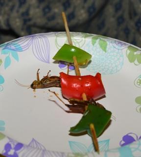 Grasshopper kebobs, anyone?