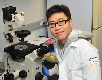 Postdoctoral researcher Sing Lee has received an NIH K99 award. (Photo by Kathy Keatley Garvey)