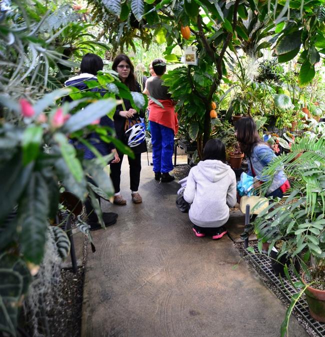 Visitors enjoying the UC Davis Botanical Conservatory.