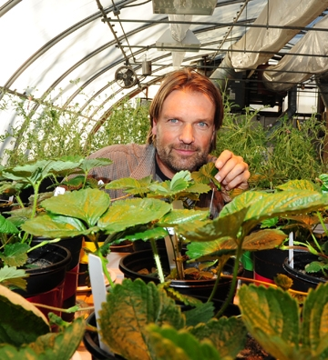 Christian Nansen, new agricultural entomologist at UC Davis. (Photo by Kathy Keatley Garvey)