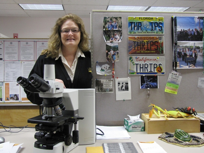 Cheryle O'Donnell in front of her 'scopes. The license plates represent all the states she's lived in. This photo was taken in San Diego in March before she left for her new position for Beltsville.