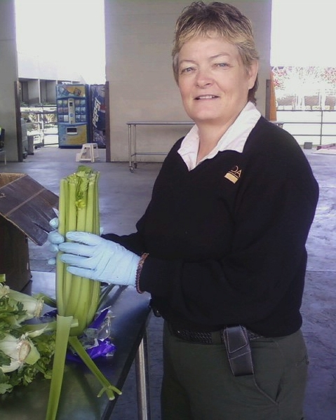Cheryle O'Donnell inspecting  celery in Colorado.