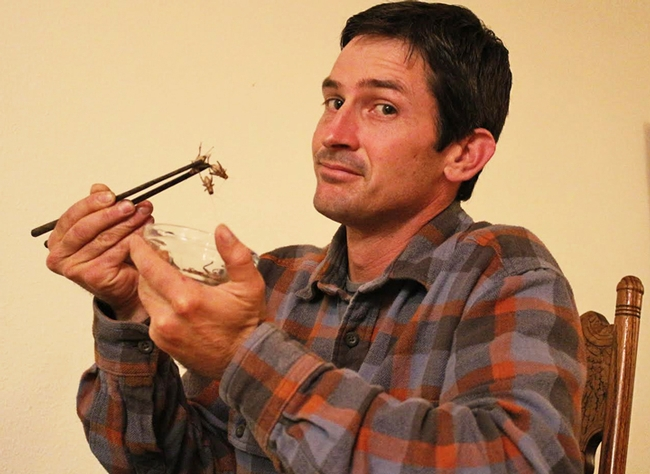 Co-author Mark Lundy, University of California Cooperative Extension agronomist, samples a cricket.