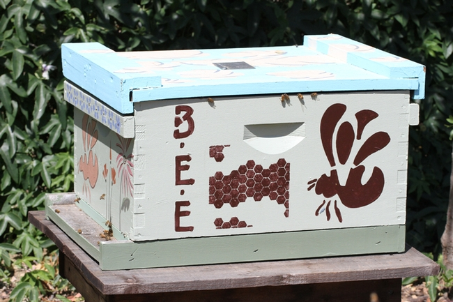 A functional bee hive is in the bee haven. (Photo by Kathy Keatley Garvey)