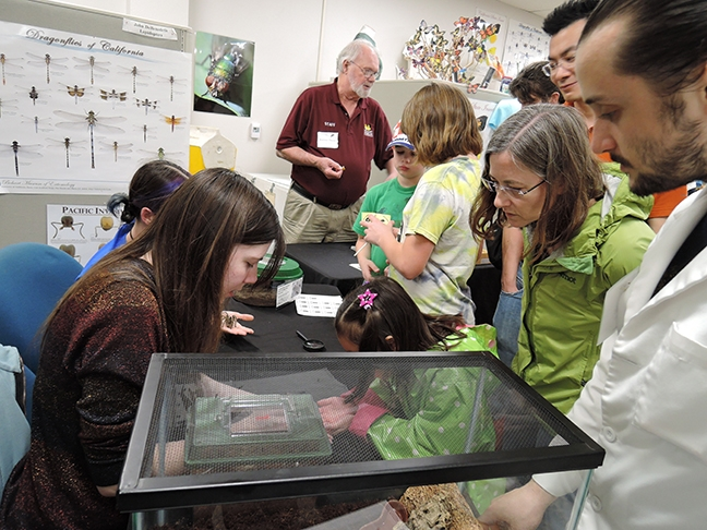 Bohart Museum associate Robbin Thorp (center), distinguished emeritus professor of entomology, with visitors at a Biodiversity Museum Day at the Bohart Museum. At right (foreground) is UC Davis entomology undergraduate student and Bohart volunteer Wade Spencer. (Photo by Kathy Keatley Garvey)