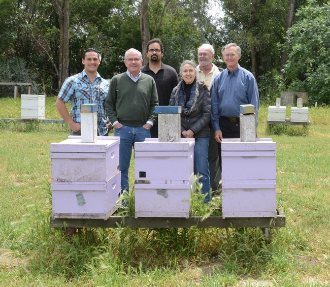 At the Laidlaw apiary: from left are staff research associate/beekeeper Bernardo Niño of the Laidlaw facilty; French bee scientist Yves Le Conte, director of the French National Institute for Agricultural Research, Paris; assistant professor/bee scientist Brian Johnson; master beekeeper/journalist Mea McNeil; Robbin Thorp, distinguished emeritus professor of entomology; and Eric Mussen, Extension apiculturist emeritus. (Photo by Kathy Keatley Garvey)
