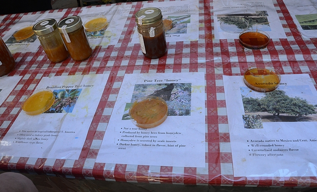 Honey--ready to be tasted! (Photo by Kathy Keatley Garvey)