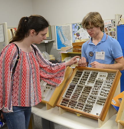Doctoral candidate Ziad Khouri shows Bohart Museum insect specimens at the 2016 UC Davis Picnic Day to attendee Andrea Gudino of Davis. (Photo by Kathy Keatley Garvey)