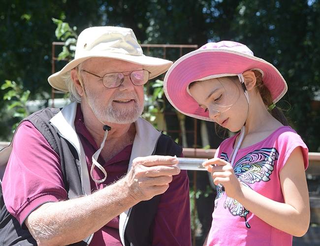 Robbin Thorp, UC Davis distinguished emeritus professor of entomology, shows a bee to a visitor at the 2016 TODS Day at the Häagen-Dazs  Honey Bee Haven. This is Lalibella Eaves, then 6, daughter of Professor Valerie Fournier of Laval University, Quebec City. Her mother was a visiting scholar in the Neal Williams lab. (Photo by Kathy Keatley Garvey)