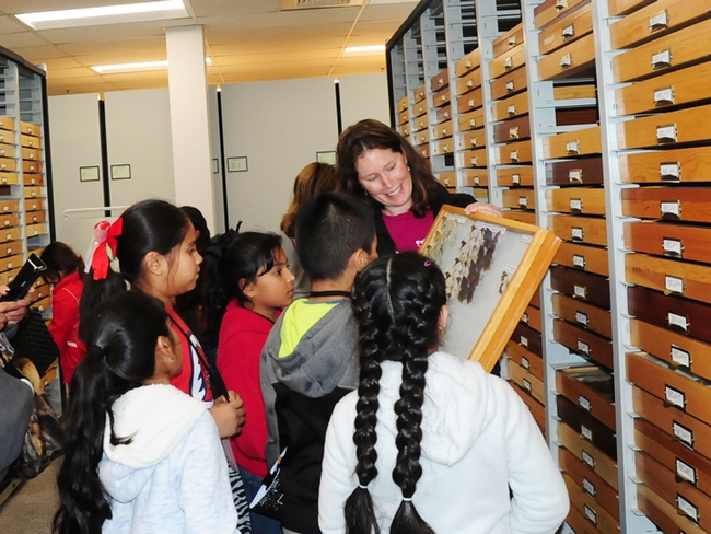 Tabatha Yang, education and outreach coordinator, shows butterfly specimens to the students. (Photo by Kathy Keatley Garvey)