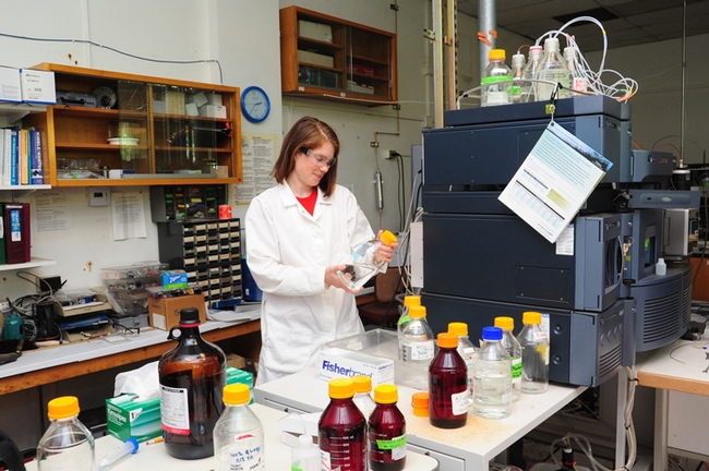 "UC Davis chemist Amy Rand, a postdoctoral researcher in Bruce Hammock's biological analytical lab at UC Davis, says science is both ""exciting and rewarding.""  (Photo by Kathy Keatley Garvey)"